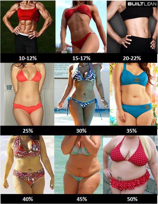 kobiety poziom tłuszczu