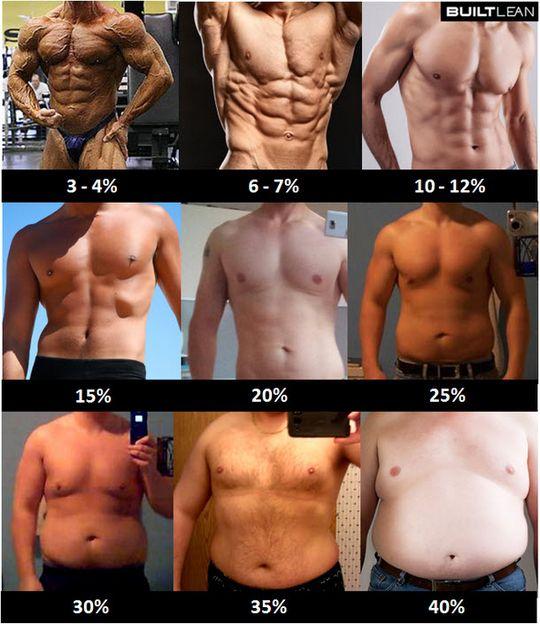 mężczyźni poziom tłuszczu