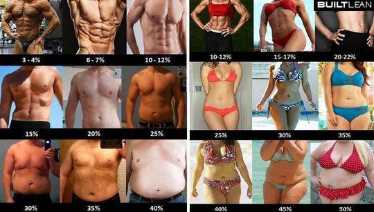 poziom tłuszczu
